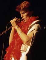 Концертные фото Дэвида